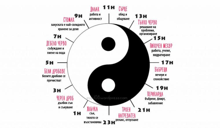 medecine-chinoise