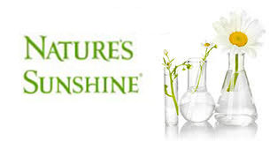 nature-sunshine-business