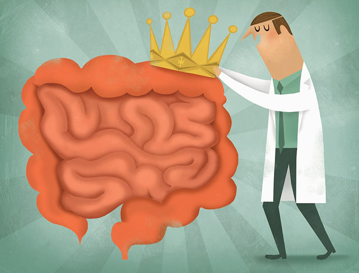 enc-vtoriat-mozak-v-korema-i-chervata