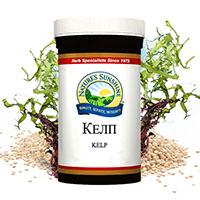 Kelp-nsp-kafiavi-vodorasli-ss