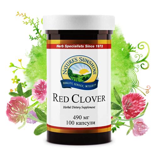 BG-red-clover-ready-pic